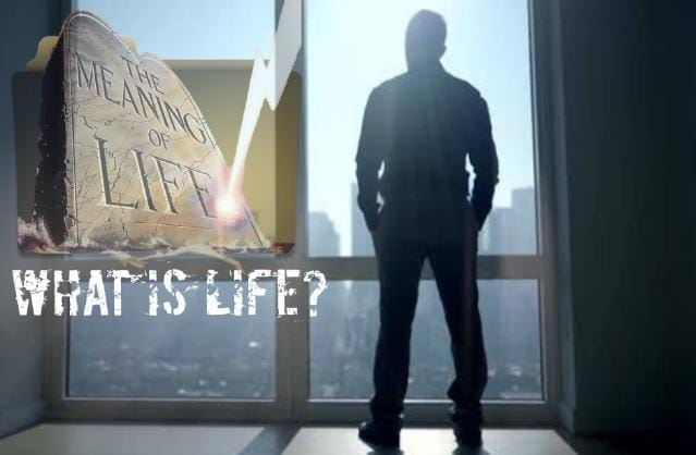 What is the Meaning of Life? – Complete Definition